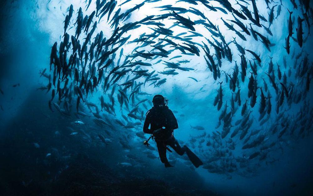 Eco Divers Costa Rica